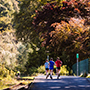 Come visit Waterford Greenway